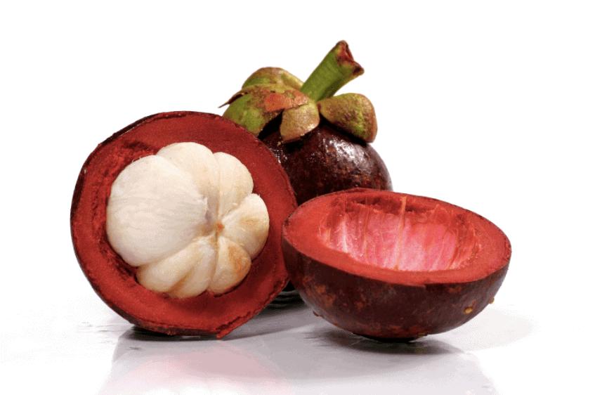 ▷ Mangostan, el fruto de la salud | Mundo Entrenamiento