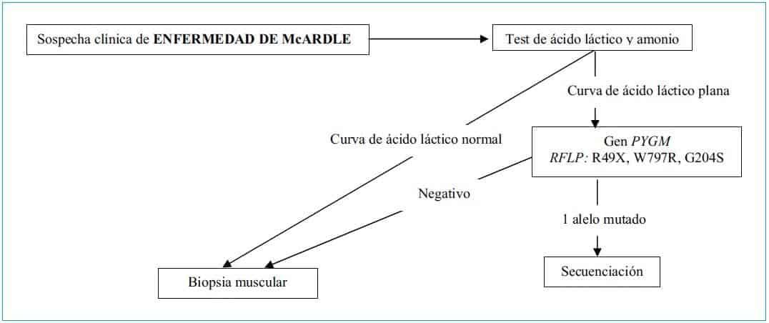 Enfermedad de McArdle