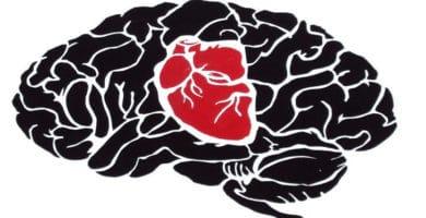 Cerebro actividad cognitiva