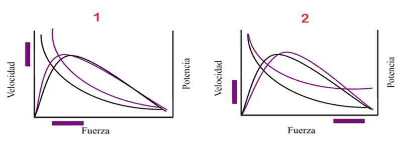 Otras curvas de Fuerza-Velocidad y Potencia