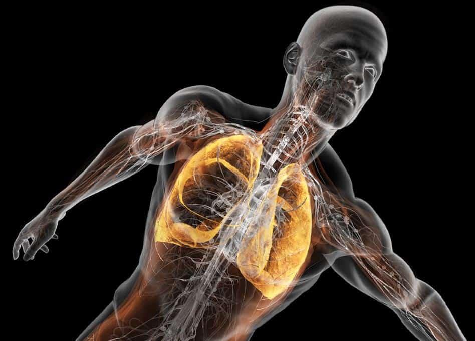 Entrenamiento respiratorio | Mundo Entrenamiento