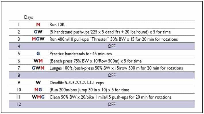 Ejemplo de distribución de ejercicios.
