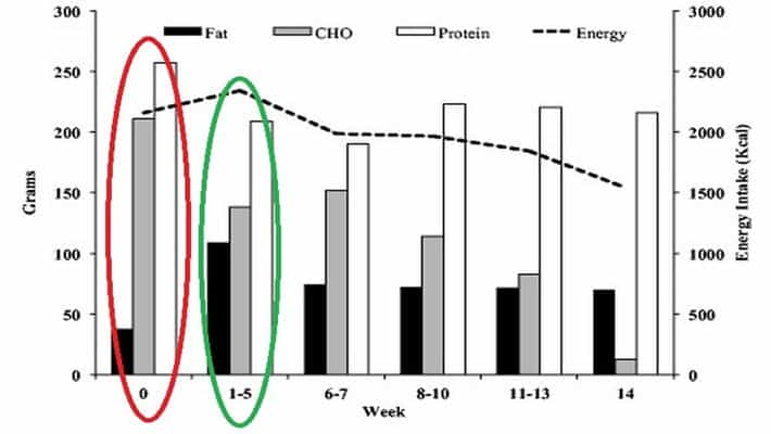 Imagen 1. Evolucion dietetica de la intervencion