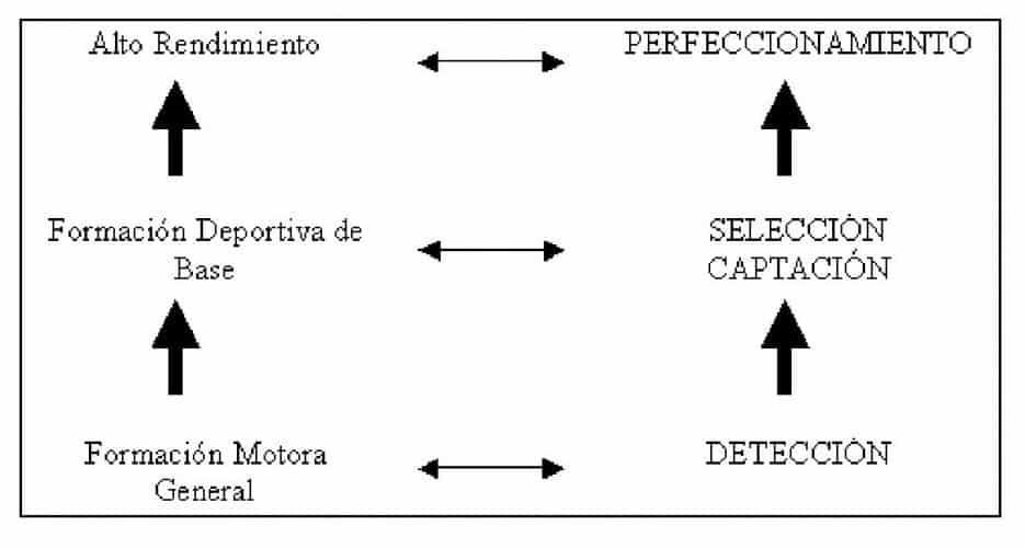 Modelo empirico o cientifico