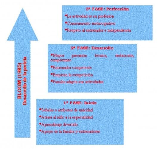 Modelo formativo o de desarrollo