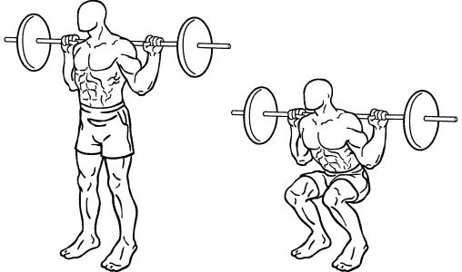 Squat, sentadilla, pesas, musculacion, musculo, pierna, fuerza