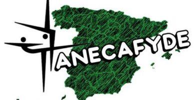 Logo de Anecafyde