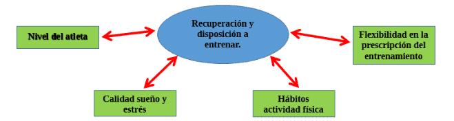 Factores que afectan a la recuperación y disposición a entrenar.