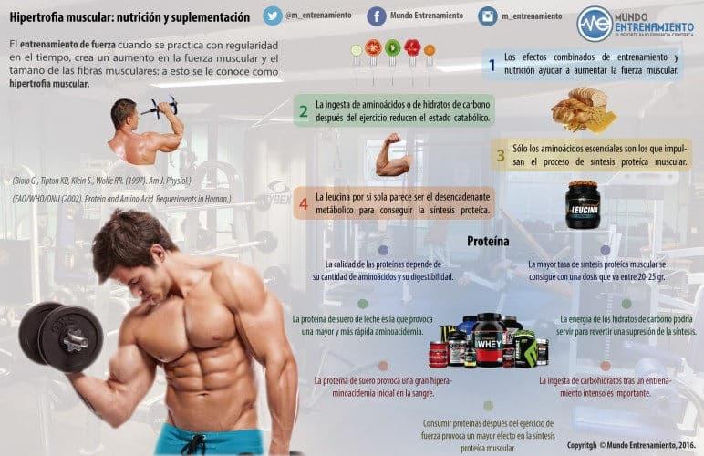 Infografía hipertrofia muscular