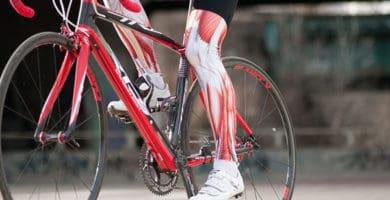 Implicación muscular en el ciclismo 1