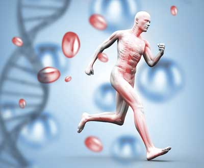 genetica y deporte