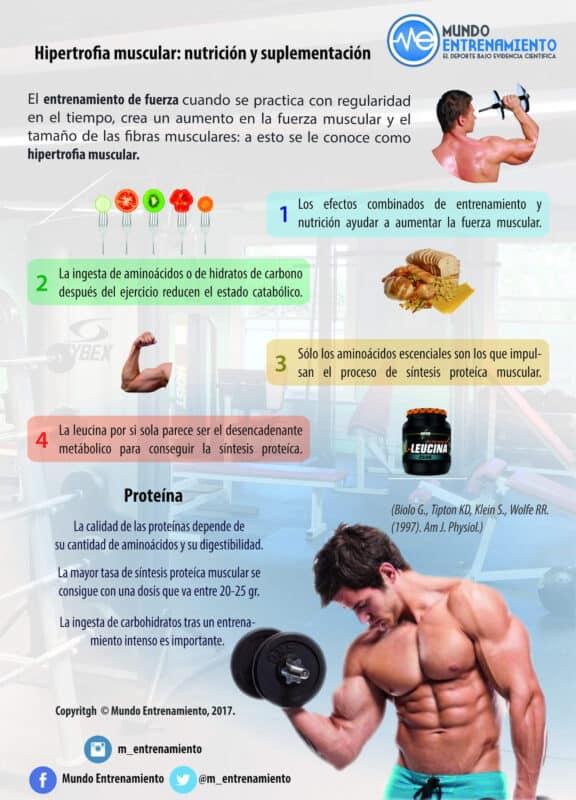 Hipertrofia muscular: Nutrición y suplementación