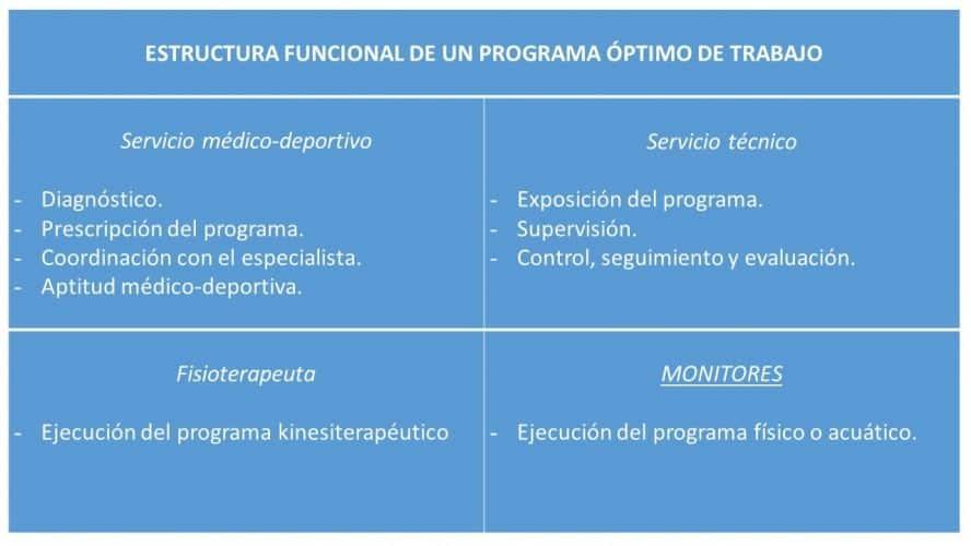 Estructura funcional de un programa óptimo de trabajo