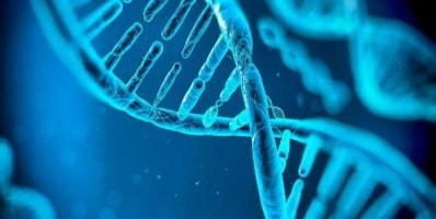 genética deportiva y entrenamiento