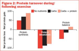 Suplementación con proteína