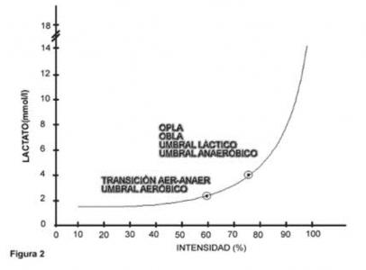 Gráfico 2. Transición aeróbico-anaeróbico.