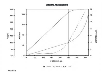 Gráfico 3. Umbral aneróbico.