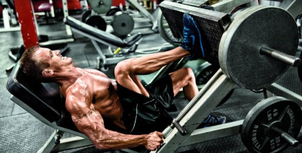 leg press unilateral