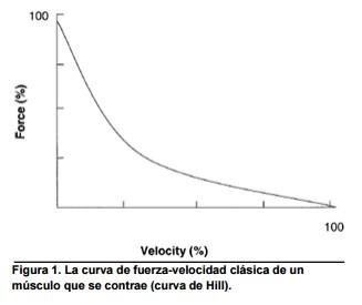 curva fuerza velocidad