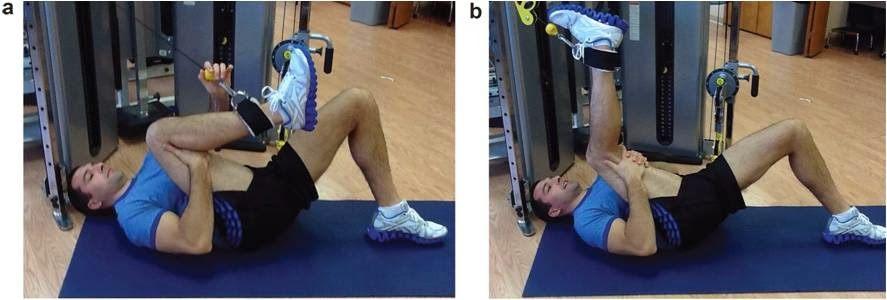trabajo excéntrico bíceps femoral