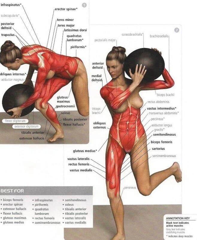 abdominales con balon pesado