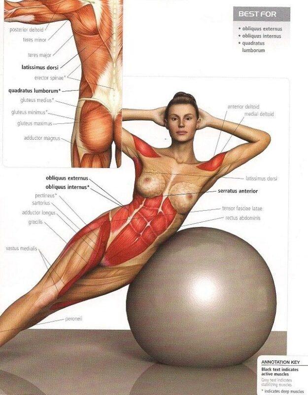 abdominales con fitball