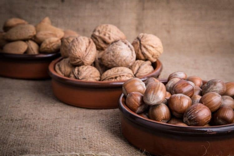 nueces y avellanas