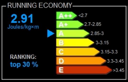 Economía de carrera