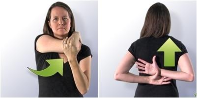 estiramientos anteriores y posteriores del hombro