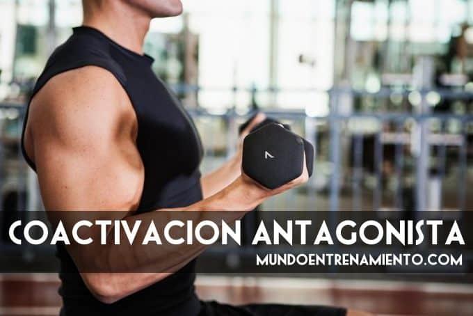 Coactivación antagonista 1