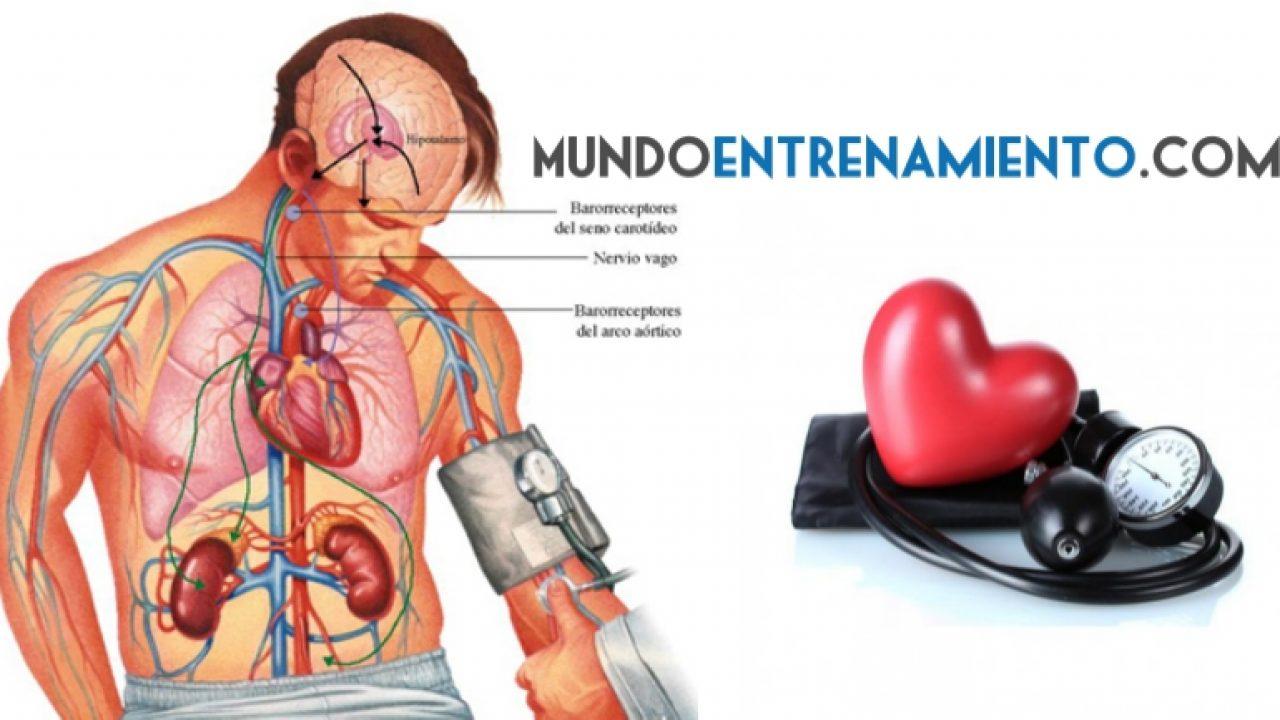 Prescripción de ejercicio de hipertensión para mayores