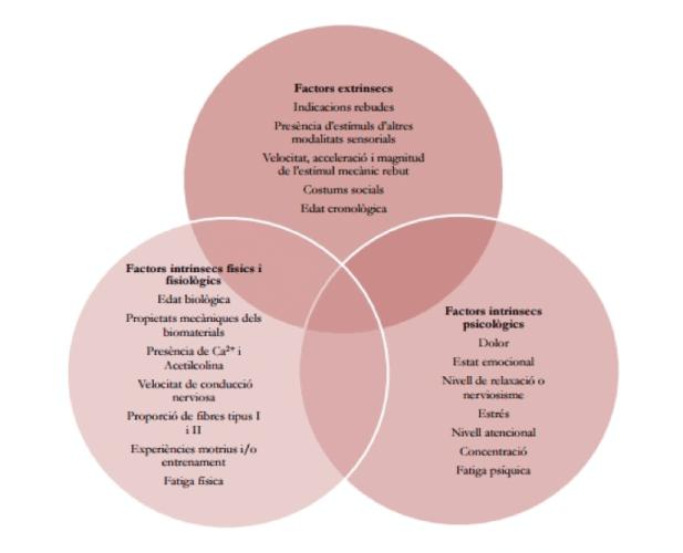 Factores que afectan a la propiocepción