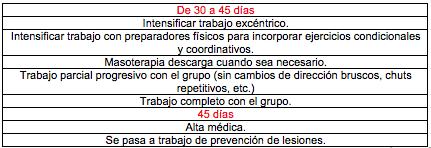 Tabla 1: Protocolo de recuperación de una lesión muscular grado II en el recto anterior (9).