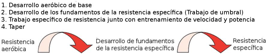 Periodización tradicional resistencia