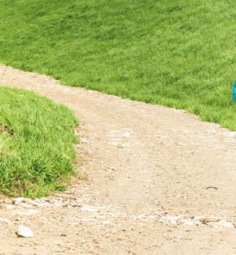 contaminación y ejercicio