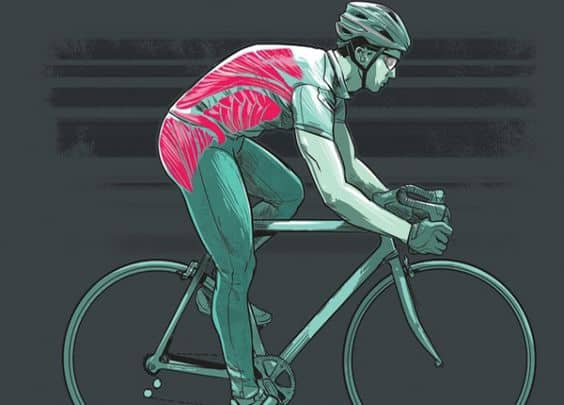 Ejercicios de core para ciclistas