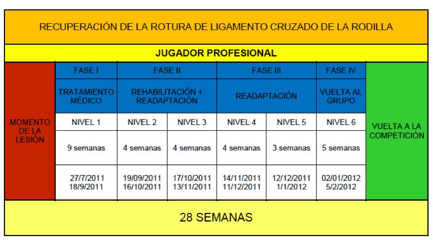 tabla 2, periodización de la lesión de ACL