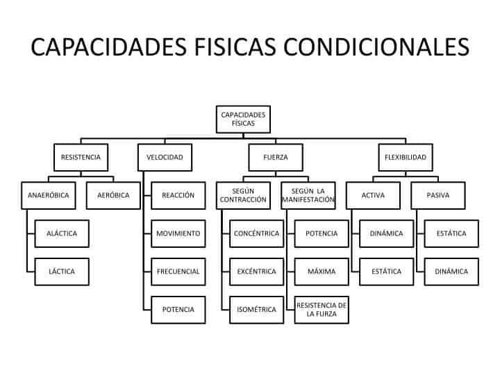 clasificación de las capacidades condicionales