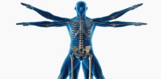 cinentropometría