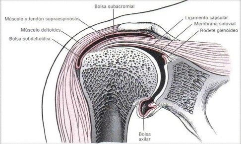 sindrome subacromial