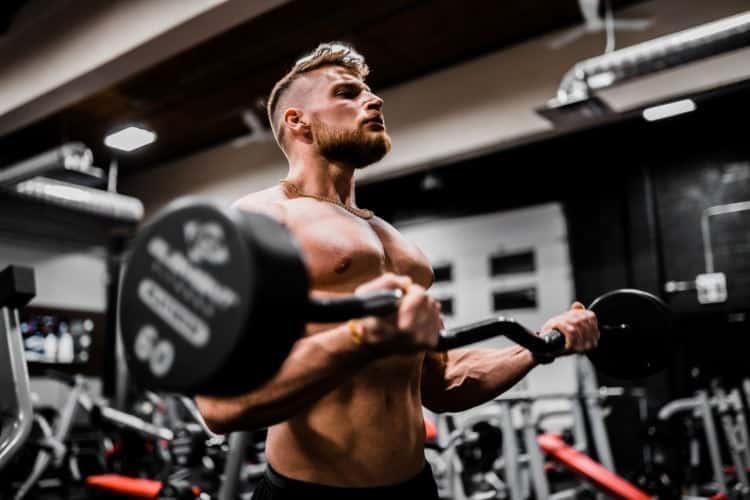 células satélite e hipertrofia muscular