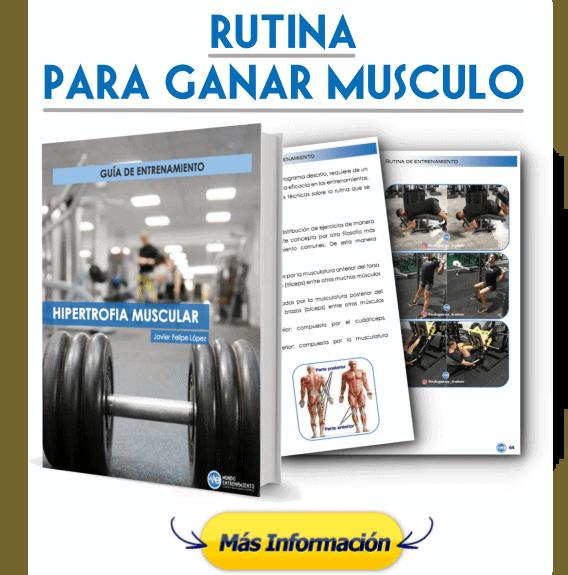 Rutina para conseguir músculo