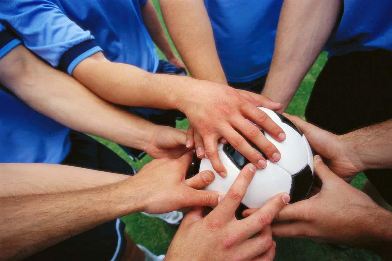 Cómo observar la cohesión de grupo? | Mundo Entrenamiento