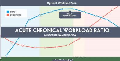 acute chronical workload ratio