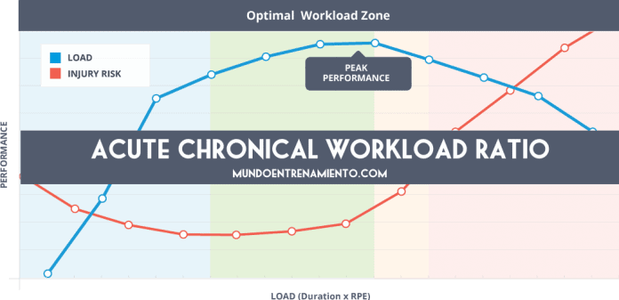 acute chronical workload ratio