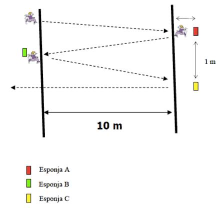 Desarrollo motor 5