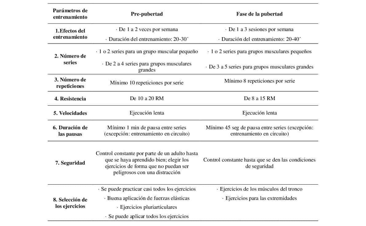 Parámetros de entrenamiento durante las etapas de desarrollo