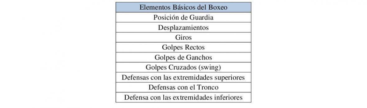Elementos básicos del Boxeo