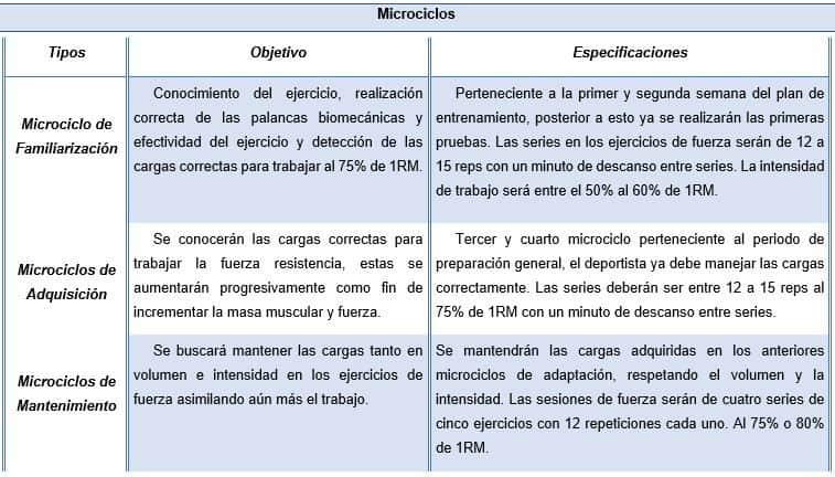 esquema de microciclos