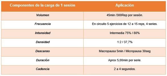 Registro de cargas en el entrenamiento en diabéticos tipo 2